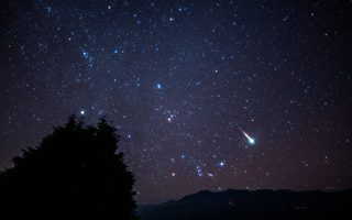 阿里山秋冬星座天文生態體驗營  出遊首選