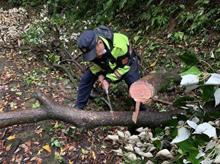 復興所員警冒雨鋸竹、鋸樹。