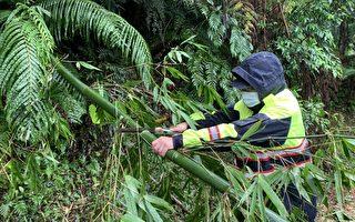 暴風竹樹倒一片 警冒雨鋸竹、鋸樹恢復通車