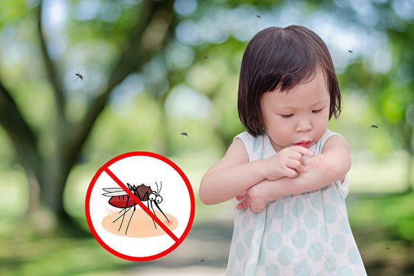 蚊子空前活跃 西尼罗河病毒阳性池创纪录