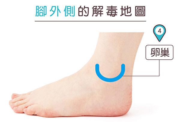 腳外側可改善更年期症狀的穴道。(蘋果屋提供)