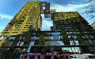 澳洲第二季度房價上漲6.7% 創下最高紀錄