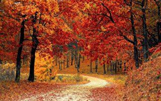 五个优先事项可打造一个高效的秋季