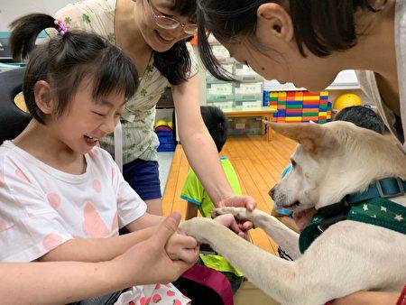 心輔犬課程服務。