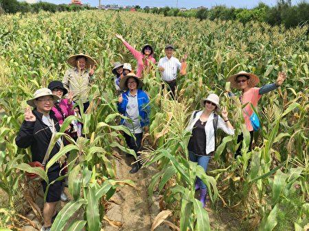 餐厅结合在地农业,车库餐厅总经理吴文慧与好友们在李文权搏士的玉米田合影。