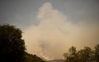 组图:加州野火延烧 著名红杉林面临威胁