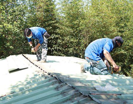 謝伯伯的屋頂一下雨就漏水,工作人員協助修繕。.
