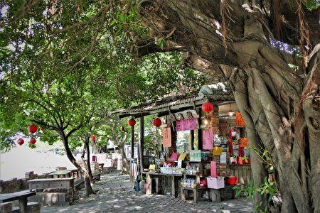 匡乙将自己精心建构的古城对外开放,他在村里挂起红灯笼,贴上红春联,并在古城中卖咖啡、冷泡茶。
