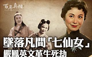 【百年真相】坠落凡间七仙女 严凤英文革生死劫