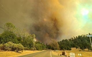 北加州小鹿山火延燒近7千英畝 灣區居民疑似縱火被捕