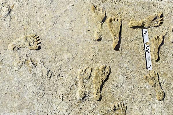 北美最古老人類腳印出土 距今2.3萬年