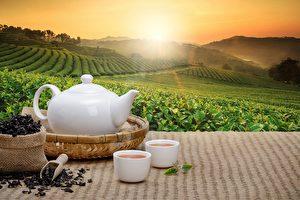 中華茶道之華 唐宋明三代人怎樣喝茶?