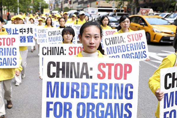 加國教授:中共對法輪功實施「冷種族滅絕」