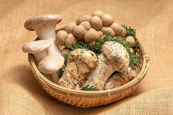 日本长野县为第一长寿县,主要原因应为当地特产的蕈菇类等农作物。(Shutterstock)