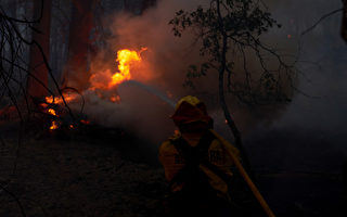天气条件助灭火 小鹿山火受控率达45%