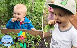 4岁童喜欢生吃新鲜蔬菜 熟知食物营养知识