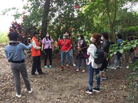 吳孢鍾帶遊客遊農莊體驗採果。