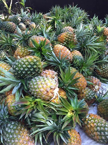 吳孢鍾用自家果園生產的水果釀醋。