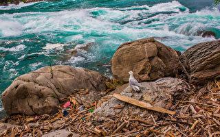 加专家警告:工业塑料流入五大湖 需政府监管