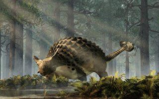 恐龍新物種化石驚現非洲 為迄今最古老甲龍