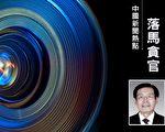 中国石油前副总裁凌霄落马