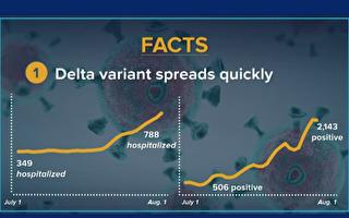 州衛生廳研究:Delta是疫苗效力減退主因