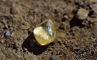 加州幸运夫妇 州立公园内拾到4.38克拉黄钻