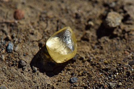 加州幸運夫婦 州立公園內拾到4.38克拉黃鑽