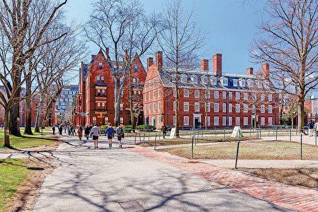 图为哈佛大学校园。