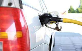 Gaspy數據顯示 新西蘭燃油價格創歷史新高