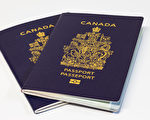 美国边境11月8日重开 加拿大现护照更新潮