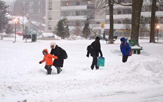 赢了!市民爬雪堆受伤告市府 官司打到最高法院