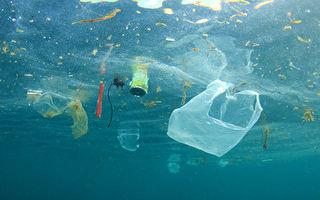 荷蘭巨型海洋清理機測試成功 拖回2萬磅垃圾
