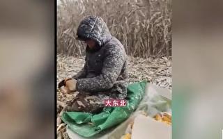 产粮大省遇洪灾 官称今年秋粮增产 遭质疑