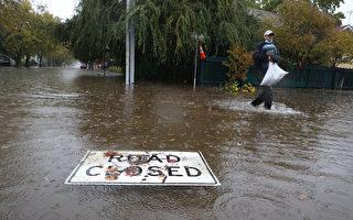 灣區狂風暴雨 納帕縣、索諾瑪縣發布山洪警報