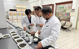 有机茶首次产销履历茶进行分类分级(TAGs)评鉴
