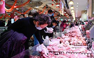 中國菜比肉貴 豬價大跌 養一頭豬賠500元