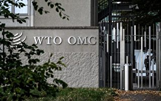 中國禁台水果納WTO議程  陳吉仲:盼獲得合理結果